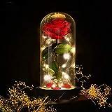 E-MANIS Kit de Rosas,La Bella y La Bestia Rosa Encantada,Elegante Cúpula de Cristal con Base Pino Luces LED,Beauty and Regalos Magicos Decoración para Día de San Valentín Aniversario Bodas