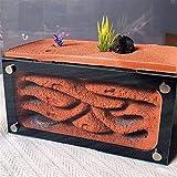 WCX 1PCS Ant Ant Nest Taller de Acrílico Yeso Nido de Burbujas de hormigón Nido Nueva Edición Imperio L Ant Farm (Color : Red)