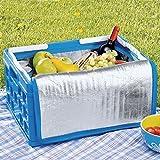 Sunware 57200611, caja plegable condoble asa y bolsa isotérmica, 32l.